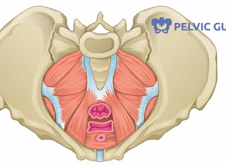 Are you expecting within 10 months?!!  Top Reasons you should see a Pelvic Health Physical Therapist