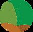 AMS Express Logo_edited.png