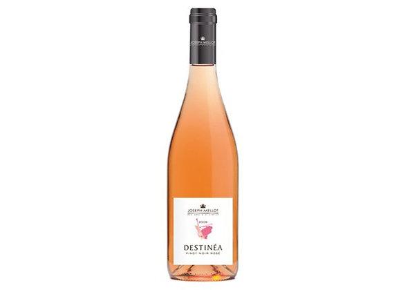 Destinéa Pinot Noir Rosé, Val de Loire
