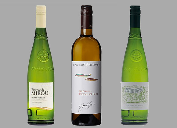 Picpoul Wine Selection
