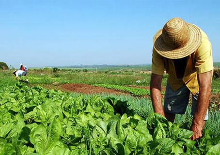 Incra lança plataforma on-line para agilizar reforma agrária no País
