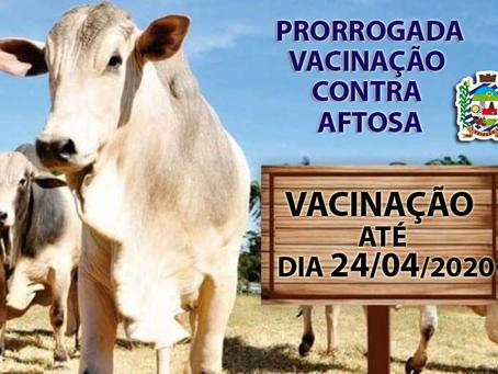 Agricultura de Estação orienta como proceder para comprovar vacinação contra a febre aftosa