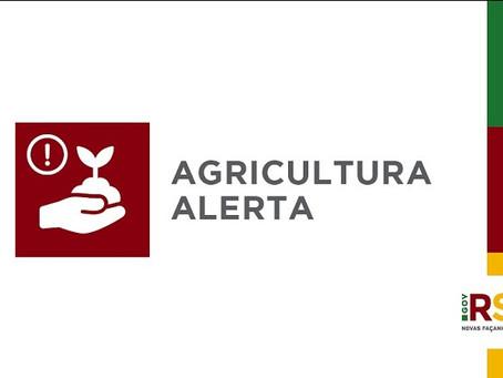 Secretaria da Agricultura do RS alerta sobre nova onda de golpes