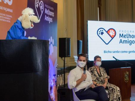 Programa do governo do RS promove castração de cães e gatos e conscientização contra maus-tratos
