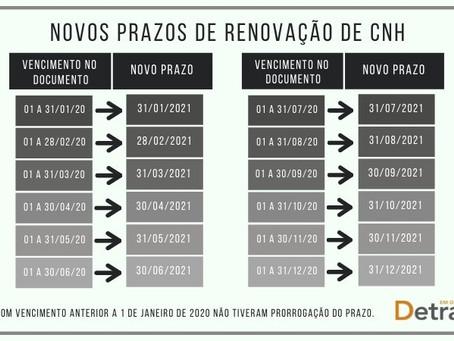 CNHs vencidas na pandemia deverão ser renovadas ao longo de 2021