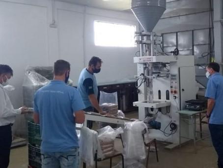 Emater incentiva investimentos na cadeia produtiva do feijão no Alto Uruguai
