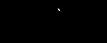 IGOR-logo 600_600.png