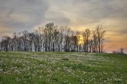 Jamestown, Kentucky