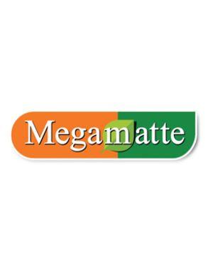 Megamate.JPG