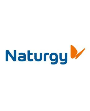 Naturgy.JPG
