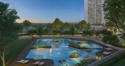Dream Gardens Pool