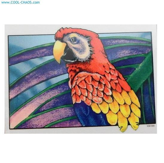 Amazing Parrot Sticker