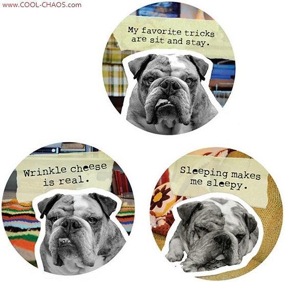 Bad Dog Bulldog Buttons Set