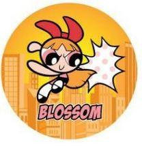Powerpuff Girls Button-Blossom Powerpuff Girls