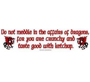 Do no meddle in affairs of dragon bumper sticker