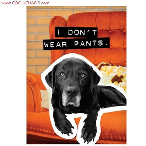 No Pants Bad Dog Black Lab Magnet