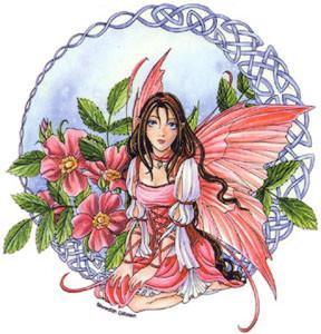 Celtic Wild Rose Fairy Sticker