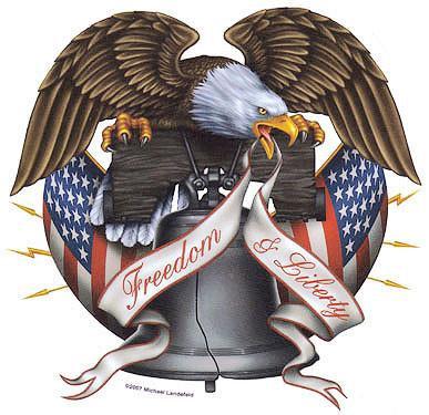 Freedom Liberty USA America Eagle Sticker