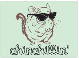 Chillin' Chinchilla Magnet