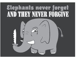 Never Forgets Funny Elephant Magnet
