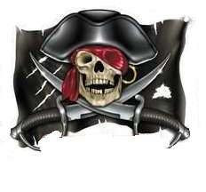 Pirate Car Magnet
