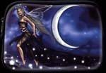 Fairy Cosmetic Bag