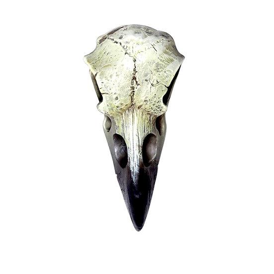 Teeny Raven Skull Resin Statue from Alchemy Gothic 1977