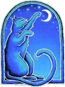 Dye the Sky Cat Catches the Moon Sticker