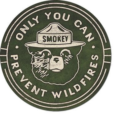 Only you can prevent forest fires Smokey The Bear Tin Sign