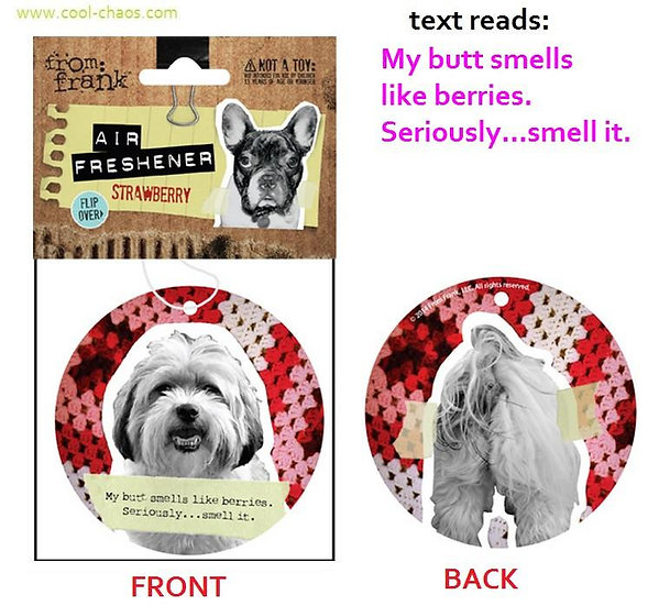 Bad Dog,Naughty Dog Maltese Air Freshener