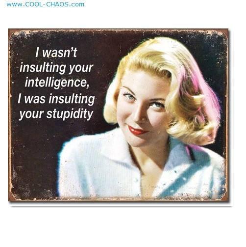 Stupidity Insult Lady - Funny Ephemera Tin Sign