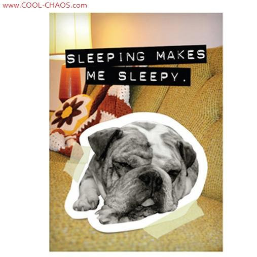 Bad Dog Sleepy Bulldog Magnet