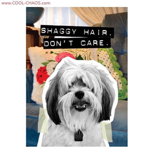 Shaggy Hair, Don't Care-Bad Dog Maltese Magnet