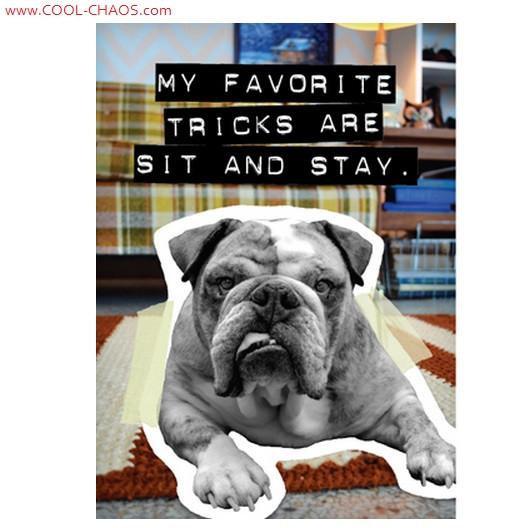 Sit Stay Bad Dog Bulldog Magnet