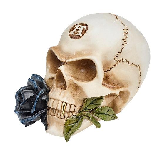 Black Rose Skull Statue / Halloween Decor by Alchemy Gothic 1977