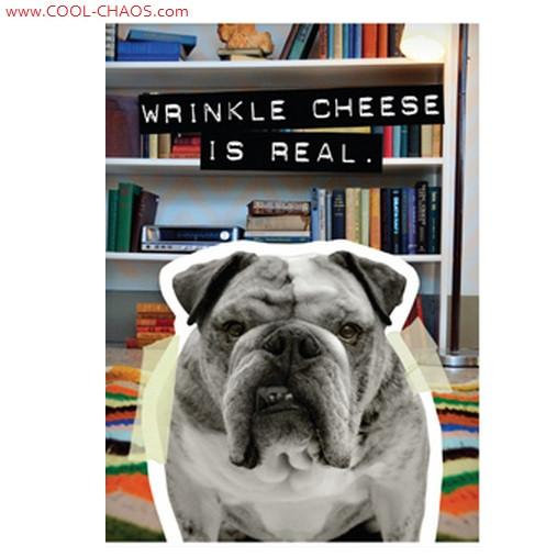 Bad Dog Wrinkle Bulldog Magnet