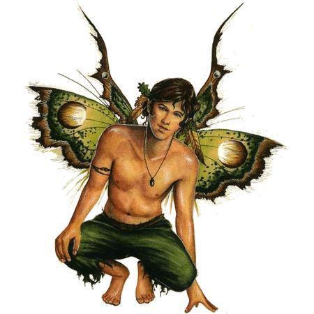 Magical Boy Fairy Sticker Acorn Faery Fantasy