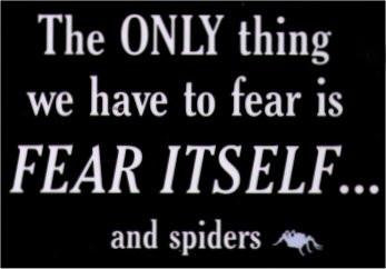 Fear of Spiders Magnet