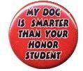 Gag Gift Button #3 My Dog is Smarter than your Honor Student