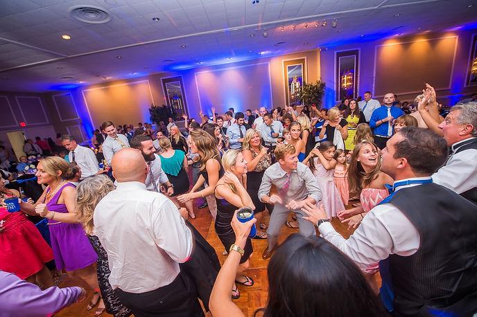 Erie DJs Wedding FUN