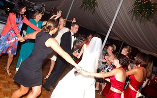 Erie Djs DJ Shawn Steele Wedding FUN
