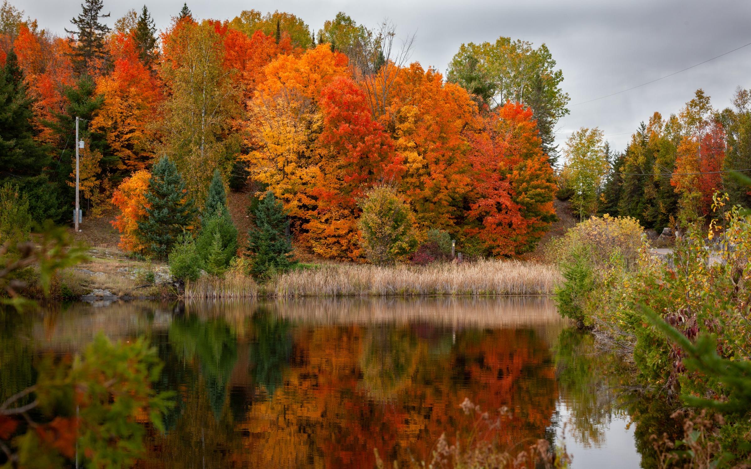 Wonderfully Fall