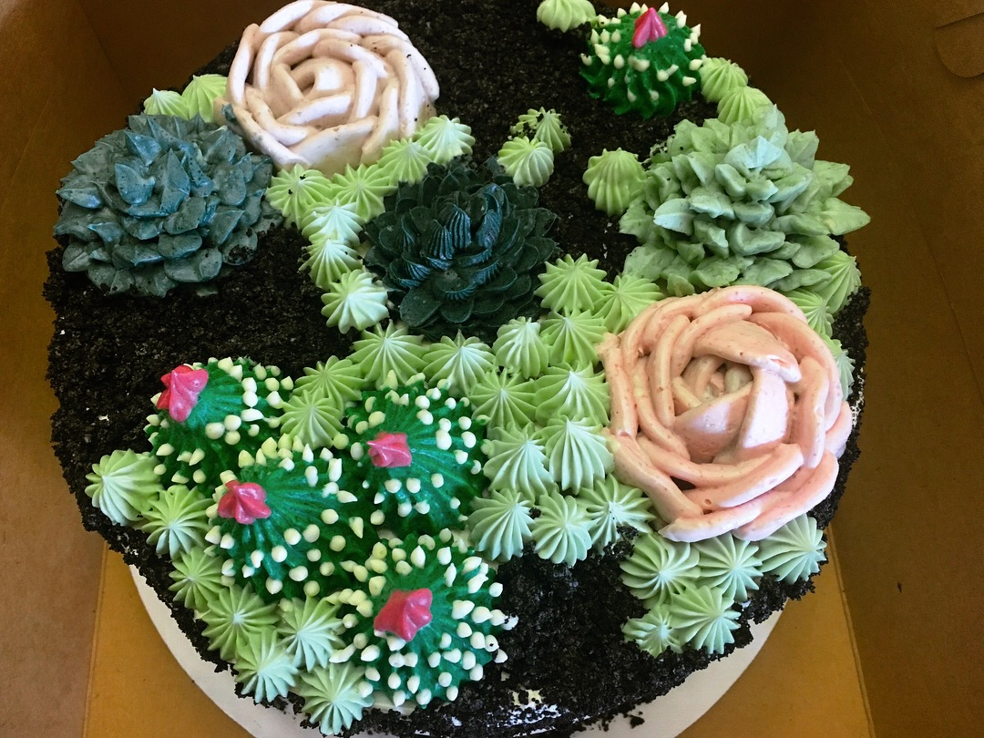Terrarium Cake Top View