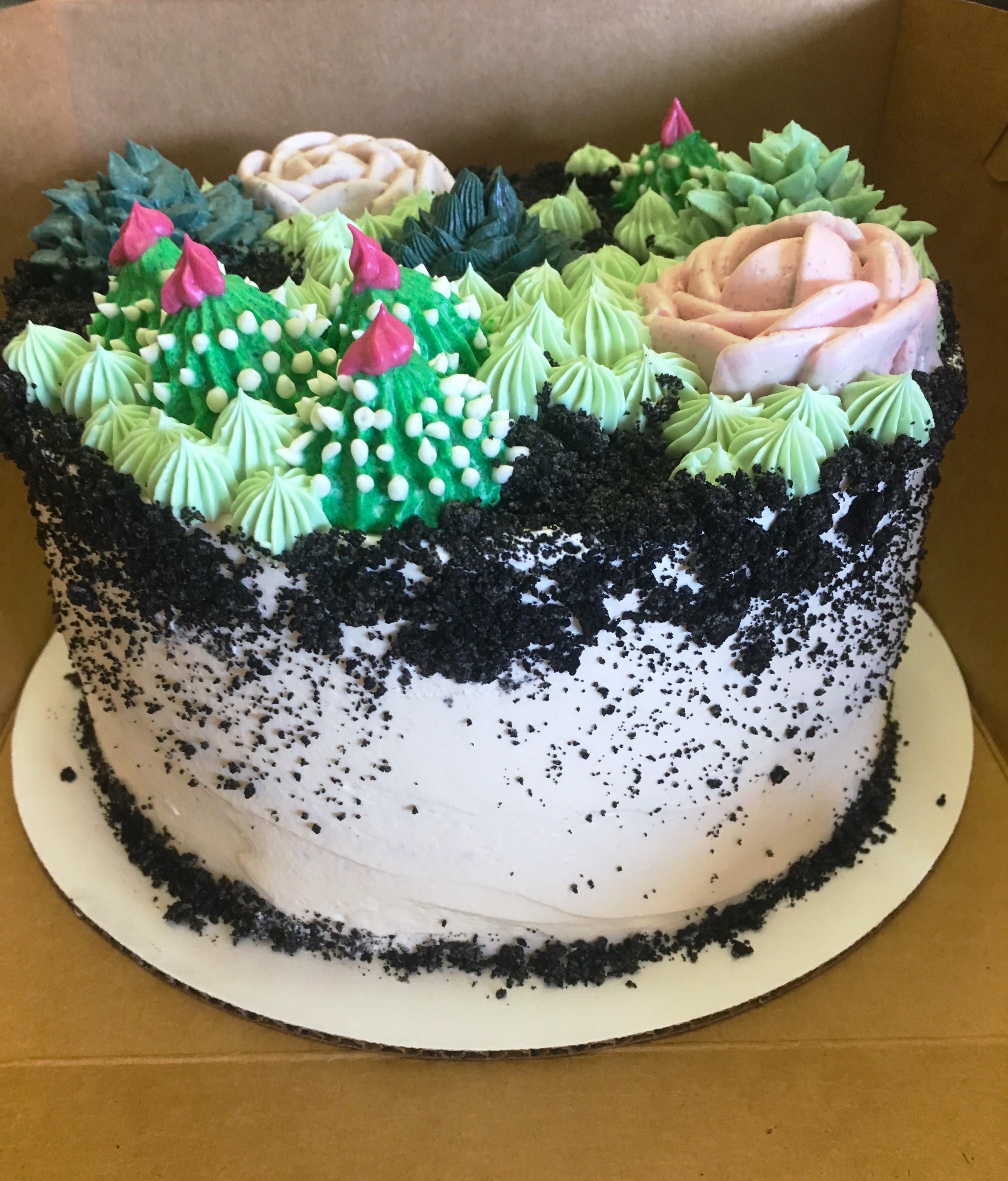 Terrarium Cake Side View