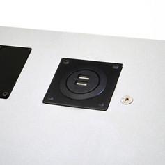 USB Outlets (2x) Module