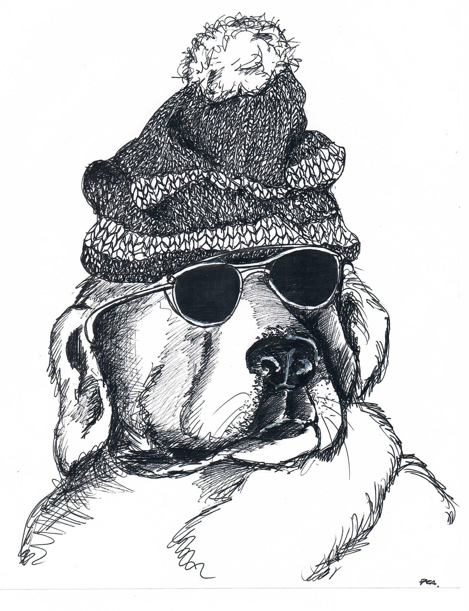 """""""Perro con gorro de lana y anteojos"""""""