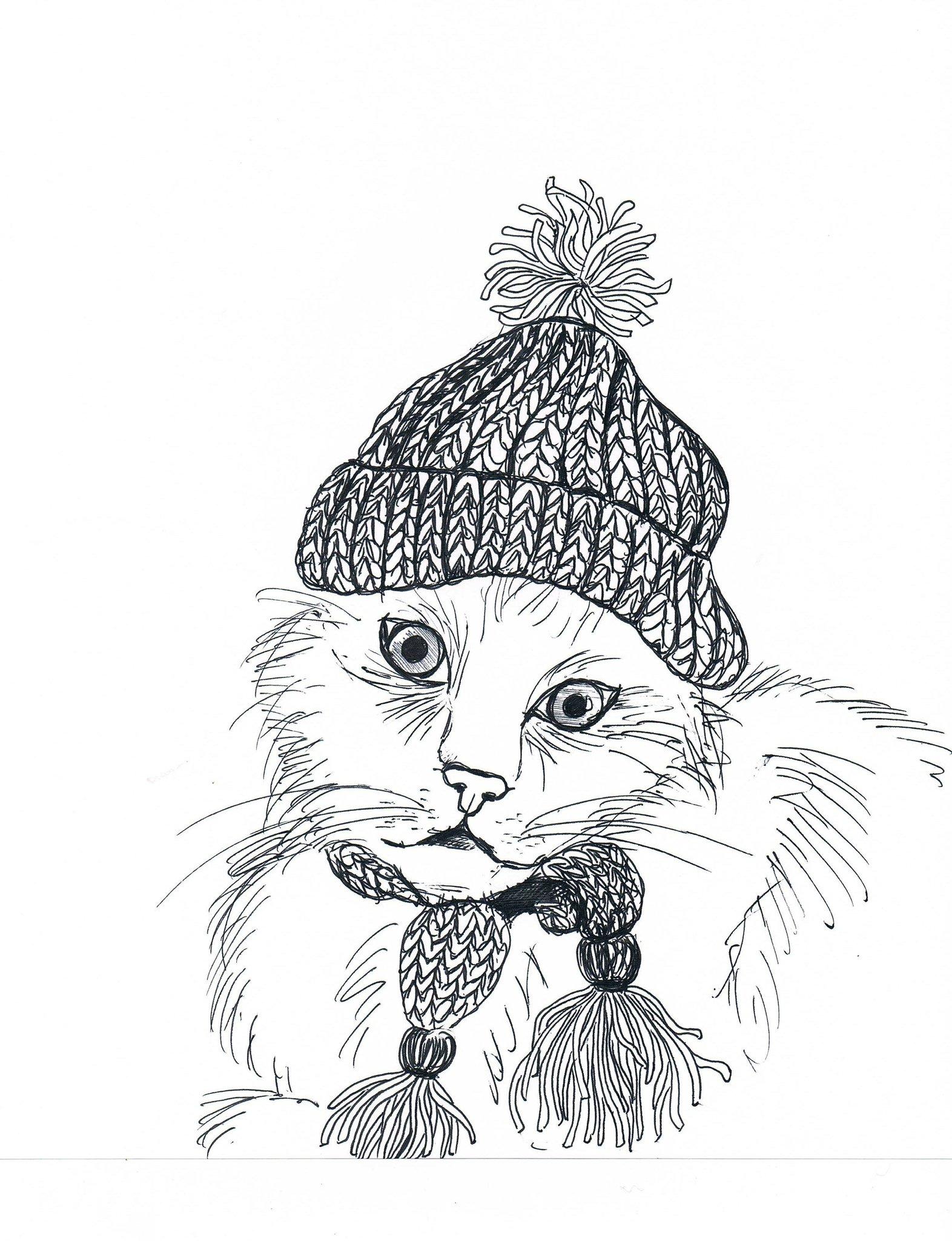 """""""Gato con gorro de lana"""""""