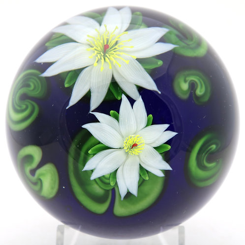 Massive Steven Lundberg Lotus Pond Art Glass Paperweight Box & COA