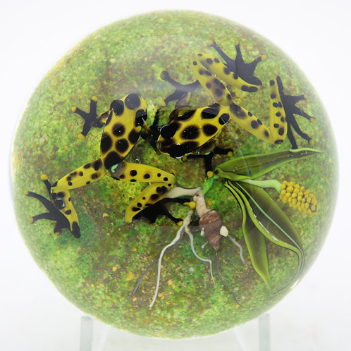 Jim D'Onofrio Yellow Poison Dart Frogs Art Glass Paperweight