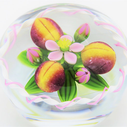 James Knotes and Gordon Smith Flower & Peaches Art Glass Aquarium Paperweight